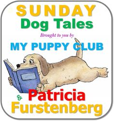 The newly adopted puppy - Sunday morning in my new home - A Puppy's Tales with Patricia Furstenberg - My Puppy Club War Dogs, Fiction Books, Dog Life, Lie Low, Books To Read, Laughter, Friendship, How To Memorize Things
