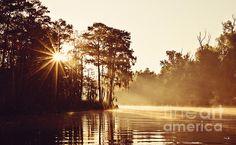 """A beautiful """"Sunrise on the Bayou"""".."""