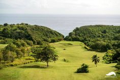 Life is better when you're golfing at #RoyalIsabela.   For reservations, please call 787.609.5888