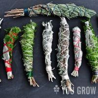 Make Your Own Smudge Sticks