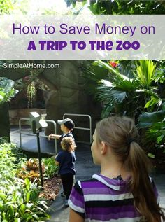 Want to take your kids to the zoo? Worried about the cost? These tips will help you save money on trips to the zoo for great learnign fun.