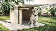 stai progettando la nuova cuccia per il tuo cane? Lasciati…