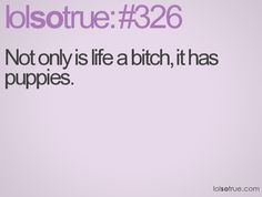 Not only is life a bitch, it has puppies. Lolsotrue, So True, Affirmations, Puppies, Times, Coffee, Sayings, Words, Funny
