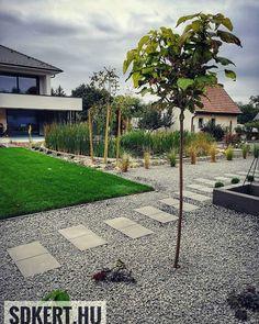 Budapest, Sidewalk, Patio, Outdoor Decor, Modern, Home Decor, Trendy Tree, Decoration Home, Room Decor