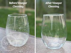 4. お酢の力でコップの水垢を取ることができる  ペーパータオルに少しのお酢を付けてコップを拭きましょう。