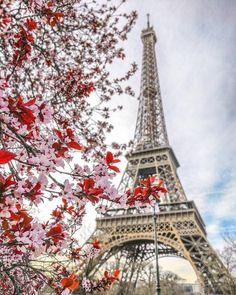 Paris in springtime...