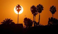 Earth is trapping 'unprecedented' amount of heat, Nasa says   Climate change   The Guardian Earth System Science, Paris Climate, About Climate Change, Climate Action, Greenhouse Gases, What Is Life About, Do Anything, Nasa, Amazing
