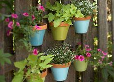 Beautiful Vertical Garden