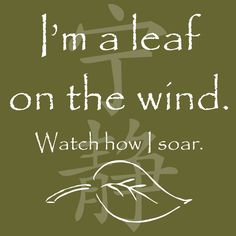 """SERENITY Leaf On The Wind  """"I'm a leaf on the wind. Watch how I soar."""""""