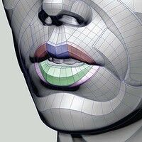 Female Lips Form, Anatomy For Sculptors Head Anatomy, Anatomy Study, Drawing Studies, Drawing Skills, Planes Of The Face, Female Lips, Anatomy Sculpture, Vintage Moon, Anatomy Sketches