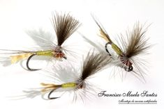 Montajes para la Trucha – Pescando a Mosca Fly Fishing Lures, Fly Tying Patterns, Dandelion, Hair Accessories, River, Flowers, Plants, Fly Fishing Flies, Fishing Tricks