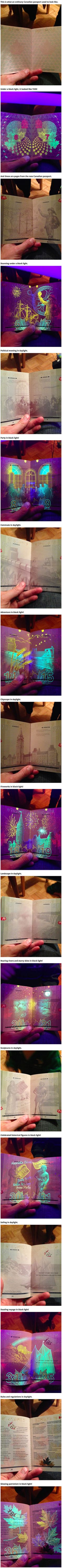 The Canadian passport has potentially earned the unexpected distinction of being the coolest passport. The pages of the new passport (released in are covered in fun and colorful UV-reactive images that can only be seen under a blacklight. My Tumblr, Tumblr Stuff, Canadian Passport, Memes, Secrets Revealed, Looks Cool, Image Shows, Cool Stuff, Mind Blown