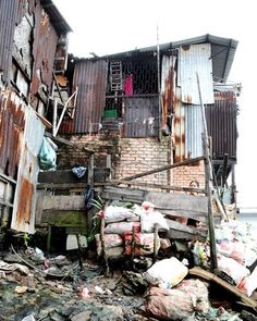 Week 8 - The percentage of slums that is already present is astonishing. By renovating the existing infrastructure of their houses to make it more stable to withstand the weather should be a huge priority. Providing a good roof and sturdy walls is a start to achieve a good environment.