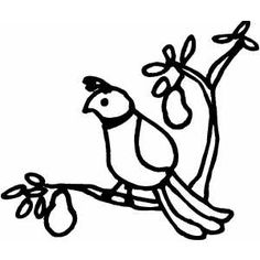 Partridge In Pear Tree Coloring Page