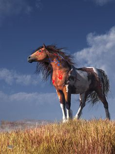 Warrior Spirit #warhorse #nativeamerican