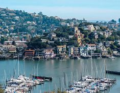 Tiburon Travel Guide: The Best Restaurants, Hotel, and Things to do in Tiburon, California Tiburon California, Northern California, Luxury Travel, Travel Usa, California Restaurants, Marin County, Romantic Getaway, Golden Gate, San Francisco Skyline