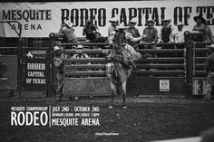 Experience the thrill with #realtexasflavor this Saturday, Sept. 10th, at the Mesquite Championship Rodeo! Watch as the toughest cowboys go head to head in events such as steer wrestling, barrel racing, and bull riding! #realtexasflavor #eliterodeoathletes #qualifyingseries #mesquitechampionshiprodeo #semifinals #2016 #cowboys #cowgirls #rodeo #barebackriding #steerwrestling #bullriding #barrelracing #tiedownroping #teamroping #saddlebackbronc #fun #entertainment #weekend #dfw #mesquitetx