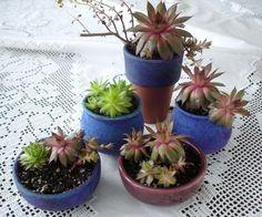 Mini Planter Handmade Ceramic Cactus Indoor by blueroompottery
