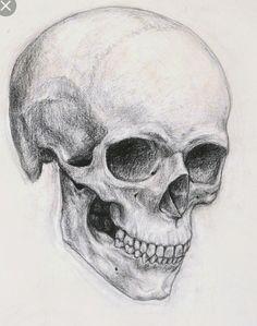 Skull angles