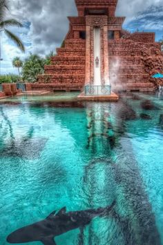 Leap of Faith at the Atlantis resort in the Bahamas.