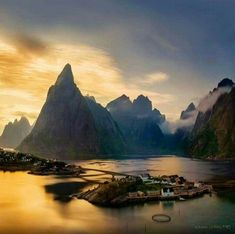 Reine, Lofoten. So beautiful it hurts.: