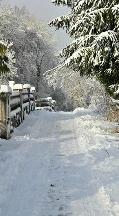 we're heading out on a snowy day. can it possibly get any prettier or more wintery? Winter Szenen, Winter Love, Winter Magic, Winter Walk, Winter's Tale, Snowy Day, Snow Scenes, Winter Pictures, Winter Beauty