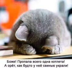 - ДАША САМСОНОВА - Google+