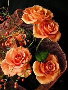Raindrops and Roses: Photo Beautiful Rose Flowers, Amazing Flowers, Pretty Roses, Romantic Roses, You're Beautiful, Orange Flowers, Flowers In Hair, Brown Flowers, Raindrops And Roses