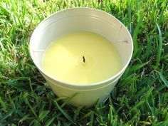 How to Make Your Own Flea Repellent With Citronella Oil