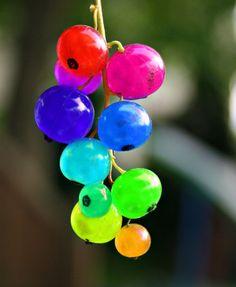 rainbow_fruit
