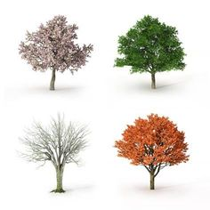 Find Tree Four Seasons stock images in HD and millions of other royalty-free stock photos, illustrations and vectors in the Shutterstock collection. Thousands of new, high-quality pictures added every day. Under The Rain, Photo Tree, Fashion Seasons, Four Seasons, Find Art, Framed Artwork, Illustration, Coloring Pages, Royalty Free Stock Photos