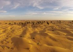 The Oasis Photo by Rogel Tura — National Geographic Your Shot