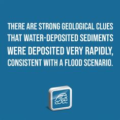 There are strong geological clues that water-deposited sediments were deposited very rapidly, consistent with a Flood scenario. Sea Dinosaurs, Institute For Creation Research, Book Of Genesis, Sea Level Rise, Destroyer Of Worlds, Pope Francis, Denial, Global Warming, Geology