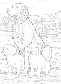 Dogs to Paint or Color Dover Publications Make your world more colorful with free printable coloring pages from italks. Our free coloring pages for adults and kids. Puppy Coloring Pages, Coloring Book Pages, Coloring Pages For Kids, Colorful Pictures, Dog Art, Animal Drawings, Sketches, Dogs, Painting