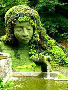 Arte en el jardín.  .