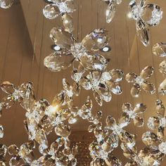 Handmade European beautiful crystal flowers and butterflies from Swarosvki crystal chandelier. Chandelier Video, Bubble Chandelier, Crystal Chandelier Lighting, Luxury Chandelier, Beaded Chandelier, Unique Chandelier, Design Your Own Home, Design Your Dream House, Butterfly Lamp