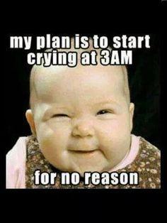 18 Best Funny Memes Images Jokes Funny Stuff Hilarious