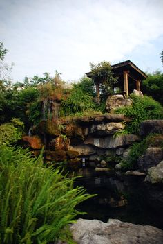 Our Jingsi Garden.Mountains and rivers.