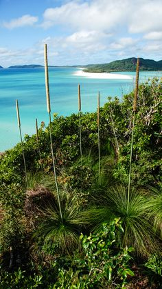 Mother Nature at her best on the Whitsunday Islands, Australia