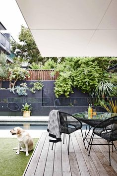 Love the weathered deck - and also think that we might be able to render the limestone wall at the back of our property a similar charcoal colour. Also like the black furniture.