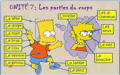 Learn French with Bart and Maggie! Or...Host an exchange student and bring the fun home! www.ccigreenheart... Parts of the body: les parties du corps