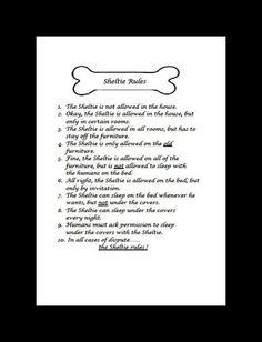 Sheltie poem