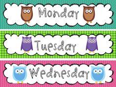 Owl Theme Classroom Pack and a Sneak Peek