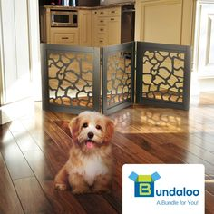 Bundaloo Pet Gate | Expandable andamp; Folding Wood Fence for Dogs andamp; Cats with Three Panels for Blocking Doors >>> (paid link) Want to know more, click on the image.