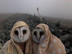 Barn Owl Masks - Masquerade, Halloween, Props — %Crooked Crow Masks - Custom Masks and Props Animal Head Masks, Bird Masks, Animal Heads, Vincent Van Gogh, Halloween Masks, Halloween Masquerade, Adult Halloween, Halloween Cosplay, Halloween Ideas