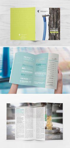 Rapport annuel 2013-2014 de la Fédération des producteurs acéricoles du Québec. Publications. Graphic Design. Annual report.