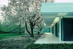 Exterior detail from Eero Saarinen´s the Miller House, Columbus, Indiana, 1953-57. Photograph by Balthazar Korab. Courtesy of the Library of Congress Prints and Photographs Division Washington, D.C. / Blogspot