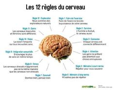 Psychology : Notre cerveau : 10 des choses les plus surprenantes quil Coaching Questions, Brain Gym, Home Schooling, Speech Therapy, Health Fitness, Survival, This Or That Questions, Voici, Anatomy