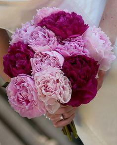 Pink Peony Bouquet :  wedding peonies Brides Bouquet