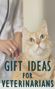 #Sponsored Best Gifts for Veterinarians to Buy | Vet Birthday Gift | Veterinarian Thank You Gifts | Veterinarian Gift Ideas | Future Vet Gifts | Veterinarian Office